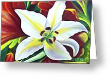 Backlit Lilly Greeting Card