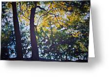 Backlit Greeting Card