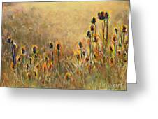 Backlit Thistle Greeting Card