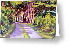 Backroad Canopy Greeting Card