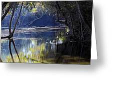 Backwater Gate Greeting Card