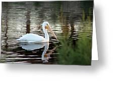 Backwater Serenity Photograph Greeting Card