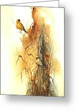 Backyard American Goldfinch Greeting Card