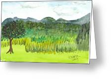 Backyard In Barton Greeting Card