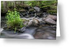 Badger Creek #2 Greeting Card