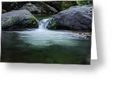 Badger Creek #4 Greeting Card