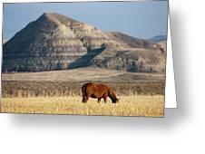 Badlands Canada Saskatchewan Greeting Card