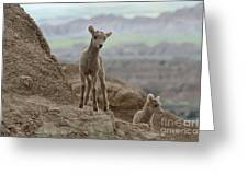 Badlands Dynamic Duo Greeting Card