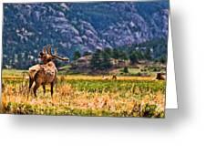 Badlands Elk  Greeting Card