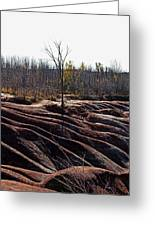 Badlands In Autumn Greeting Card