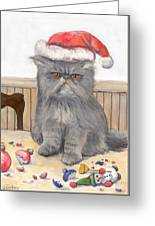 Bah Humbug Greeting Card