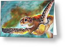 Bahamian Turtle Dove Greeting Card