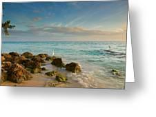 Bahia Honda Shoreline Greeting Card