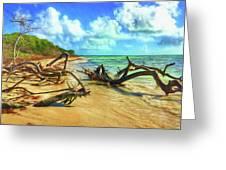 Bahia Honda State Park Greeting Card