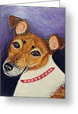 Bailey Terrier Mix Greeting Card