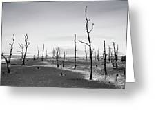 Bako National Park 2 Greeting Card