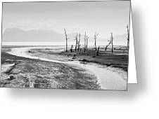 Bako National Park At Low Tide. Greeting Card