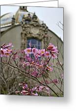 Balboa Park Building And Spring Flowers - San Diego Greeting Card