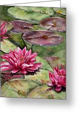 Balboa Water Lilies Greeting Card