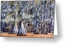 Bald Cypress In Caddo Lake Greeting Card