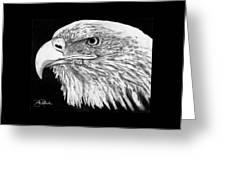 Bald Eagle #4 Greeting Card