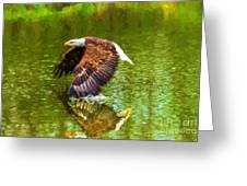 Bald Eagle Cutting The Water Greeting Card