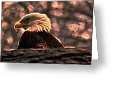 Bald Eagle Electrified Greeting Card