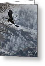 Bald Eagle In Flight-signed-#4014 Greeting Card