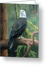 Bald Eagle In Pastel Greeting Card
