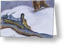 Bald Eagle On Snowdrift Wildlife Vignette Greeting Card