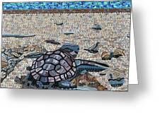 Bald Head Island, Loggerhead Sea Turtle Greeting Card