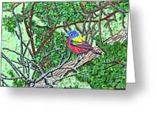 Bald Head Island, Painted Bunting At Defying Gravity Greeting Card