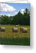 Bales In The Field Greeting Card