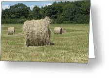 Bales Of Hay In New England Field Greeting Card