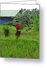 Balinese Lady Carrying Pot Greeting Card