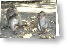 Balinese Monkeys Eating Greeting Card