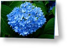 Ball Of Blue Greeting Card