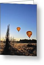 Balloons At Sunrise Greeting Card