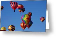 Balloons In Albuquerque Greeting Card