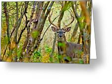 Bambi's Father Greeting Card
