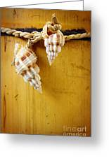 Bamboo And Conches Greeting Card