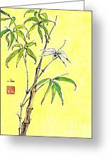 Bamboo And Dragonfly Greeting Card