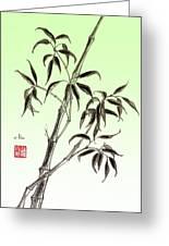 Bamboo Drawing  Greeting Card