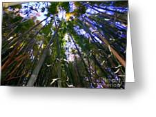 Bamboo Dreams #4 Greeting Card