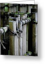 Bamboo Fence Greeting Card by Samantha Kimble