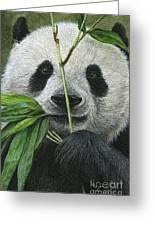 Bamboo Foodie Greeting Card