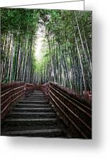 Bamboo Forest Of Japan Greeting Card by Daniel Hagerman