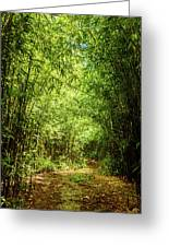 Bamboo Hike Greeting Card