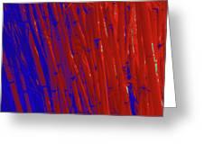 Bamboo Johns Yard 3 Greeting Card