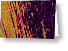 Bamboo Johns Yard 8 Greeting Card
